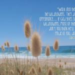 Wildflower wisdom